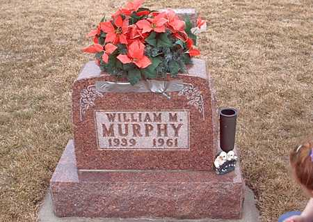 MURPHY, WILLIAM M - Taylor County, Iowa | WILLIAM M MURPHY