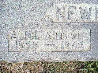 NEWMAN, ALICE A. - Taylor County, Iowa   ALICE A. NEWMAN