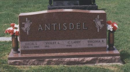 ANTISDEL, CECIL IRVIN - Union County, Iowa | CECIL IRVIN ANTISDEL