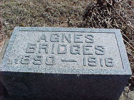 BRIDGES, AGNES ARAMENTA - Union County, Iowa | AGNES ARAMENTA BRIDGES
