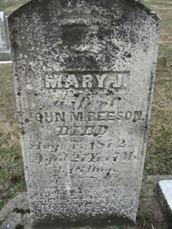 BEESON, MARY J. - Van Buren County, Iowa | MARY J. BEESON