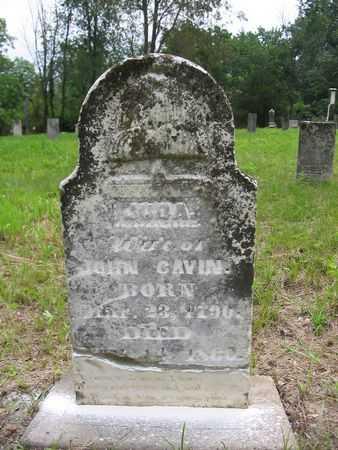 CAVIN, JUDA - Van Buren County, Iowa | JUDA CAVIN