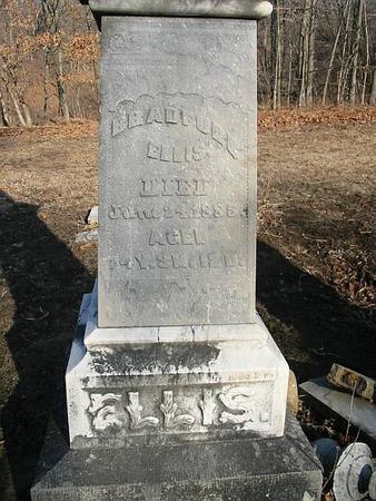 ELLIS, BRADFORD - Van Buren County, Iowa | BRADFORD ELLIS
