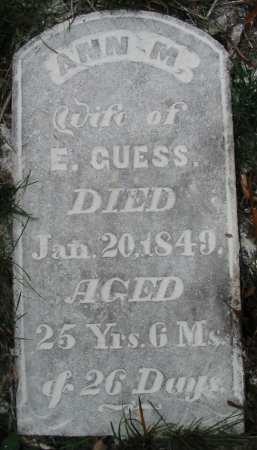 GUESS, ANN M. - Van Buren County, Iowa | ANN M. GUESS