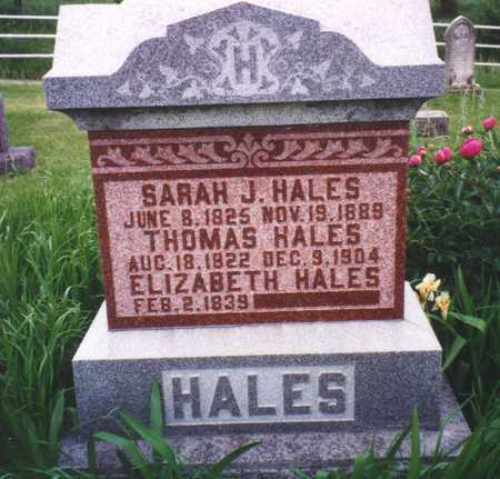 BLACKLEDGE HALES, ELIZABETH - Van Buren County, Iowa | ELIZABETH BLACKLEDGE HALES
