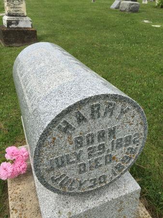 HELLWIG, HARRY - Van Buren County, Iowa   HARRY HELLWIG