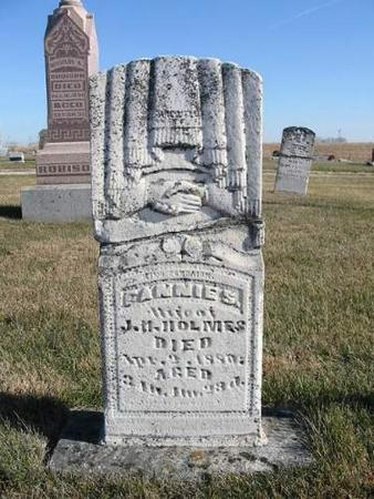 HOLMES, FANNIE S. - Van Buren County, Iowa | FANNIE S. HOLMES