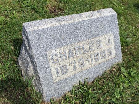NELSON, CHARLES J. - Van Buren County, Iowa | CHARLES J. NELSON