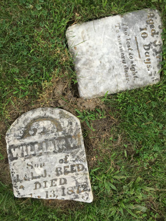 REED, WILLIAM W. - Van Buren County, Iowa | WILLIAM W. REED