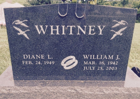 WHITNEY, WILLIAM J. - Van Buren County, Iowa | WILLIAM J. WHITNEY