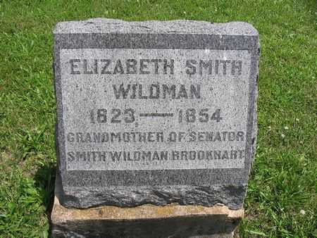 SMITH WILDMAN, ELIZABETH - Van Buren County, Iowa | ELIZABETH SMITH WILDMAN