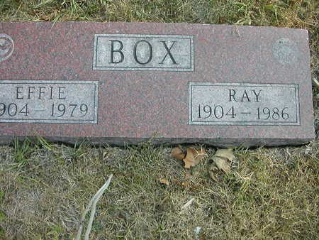 BOX, EFFIE - Wapello County, Iowa | EFFIE BOX