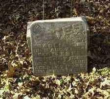 ESTES, HENRY B. - Wapello County, Iowa | HENRY B. ESTES