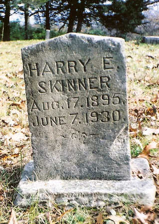 SKINNER, HARRY E. - Wapello County, Iowa | HARRY E. SKINNER