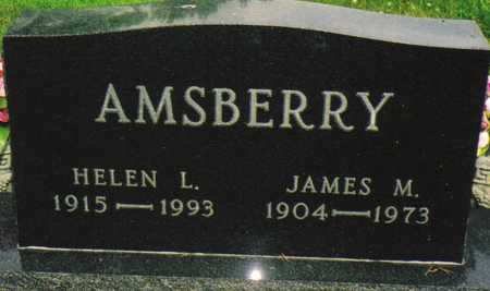 AMSBERRY, JAMES M. - Warren County, Iowa | JAMES M. AMSBERRY