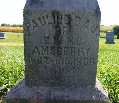 AMSBERRY, PAULINE - Warren County, Iowa | PAULINE AMSBERRY