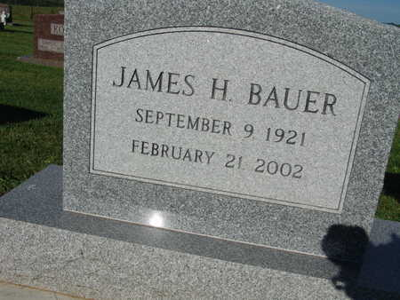 BAUER, JAMES H. - Warren County, Iowa | JAMES H. BAUER