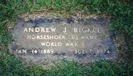 BICKLE, ANDREW J - Warren County, Iowa | ANDREW J BICKLE