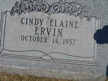 ERVIN, CINDY ELAINE - Warren County, Iowa | CINDY ELAINE ERVIN