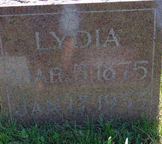FELLOWS, LYDIA - Warren County, Iowa | LYDIA FELLOWS