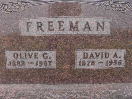 FREEMAN, DAVID A. - Warren County, Iowa | DAVID A. FREEMAN