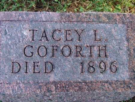 GOFORTH, TACEY L - Warren County, Iowa | TACEY L GOFORTH