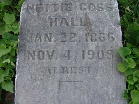 HALL, NETTIE GOSS - Warren County, Iowa | NETTIE GOSS HALL