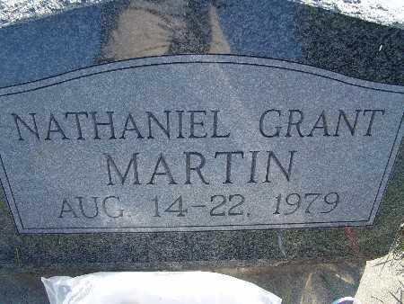 MARTIN, NATHANIEL GRANT - Warren County, Iowa | NATHANIEL GRANT MARTIN