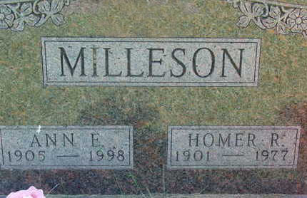 MILLESON, ANN E - Warren County, Iowa | ANN E MILLESON