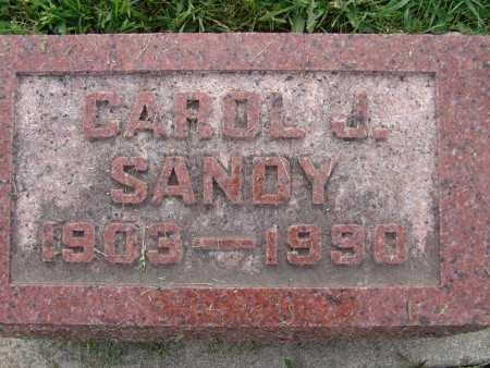 SANDY, CAROL J. - Warren County, Iowa | CAROL J. SANDY