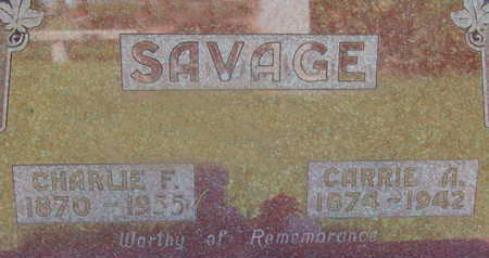 SAVAGE, CHARLIE F - Warren County, Iowa | CHARLIE F SAVAGE