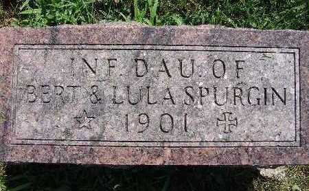 SPURGIN, INF. DAU. - Warren County, Iowa | INF. DAU. SPURGIN
