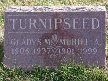 TURNIPSEED, MURIEL A. - Warren County, Iowa | MURIEL A. TURNIPSEED