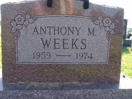 WEEKS, ANTHONY M. - Warren County, Iowa | ANTHONY M. WEEKS