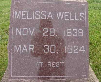 WELLS, MELISSA - Warren County, Iowa | MELISSA WELLS