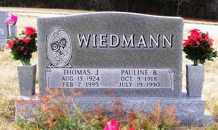 WIEDMANN, THOMAS J. - Warren County, Iowa   THOMAS J. WIEDMANN