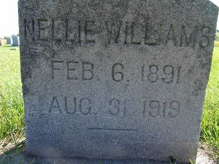 WILLIAMS, NELLIE - Warren County, Iowa | NELLIE WILLIAMS