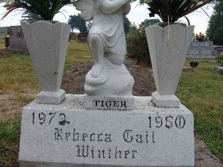 WINTHER, REBECCA GAIL - Warren County, Iowa | REBECCA GAIL WINTHER