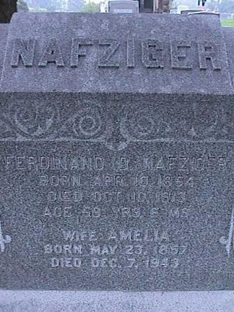 NAFZIGER, FERDINAND - Washington County, Iowa | FERDINAND NAFZIGER