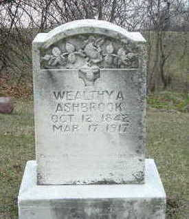 ASHBROOK, WEALTHY A. - Washington County, Iowa | WEALTHY A. ASHBROOK