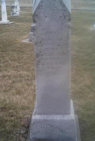 DESING, MARY - Washington County, Iowa   MARY DESING