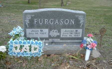 FURGASON, JUNIOR W. - Washington County, Iowa | JUNIOR W. FURGASON