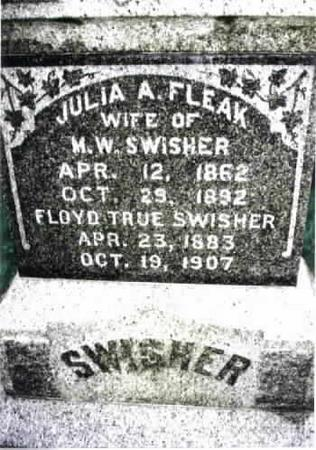 FLEAK SWISHER, JULIA A. - Washington County, Iowa | JULIA A. FLEAK SWISHER
