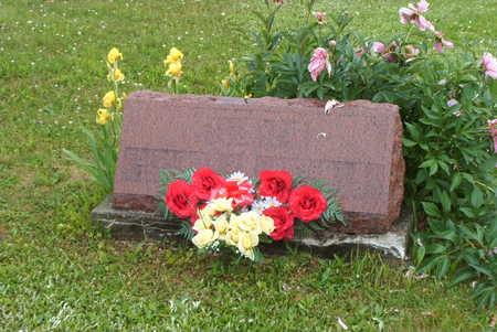 RYUN PALMER, ELIZABETH - Wayne County, Iowa | ELIZABETH RYUN PALMER