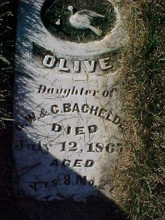 BACHELDER, OLIVE - Winneshiek County, Iowa | OLIVE BACHELDER