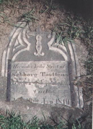 JORSTAD BORSHEIM, SEBORG TOSTENSDATTER - Winneshiek County, Iowa | SEBORG TOSTENSDATTER JORSTAD BORSHEIM