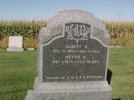 BUCKNAM, ALBERT R. - Winneshiek County, Iowa | ALBERT R. BUCKNAM