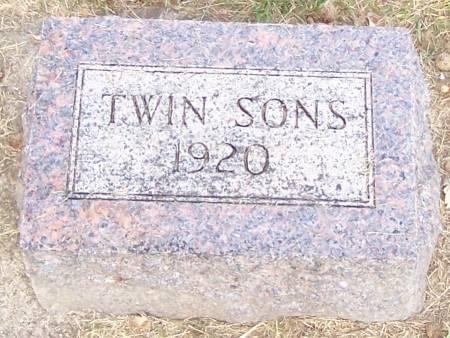 HANSON, TWIN SONS - Winneshiek County, Iowa | TWIN SONS HANSON