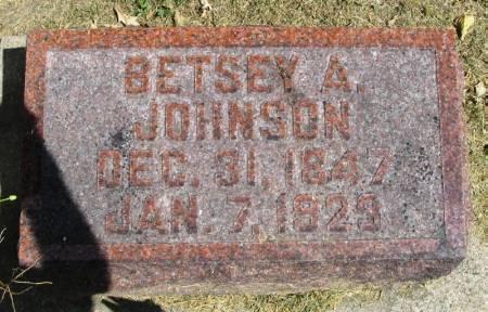 JOHNSON, BETSEY A - Winneshiek County, Iowa | BETSEY A JOHNSON