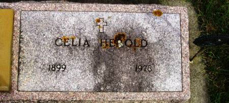 HEROLD, CELIA - Winneshiek County, Iowa | CELIA HEROLD